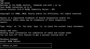 Screenshot of the default MySQL command-line banner and prompt