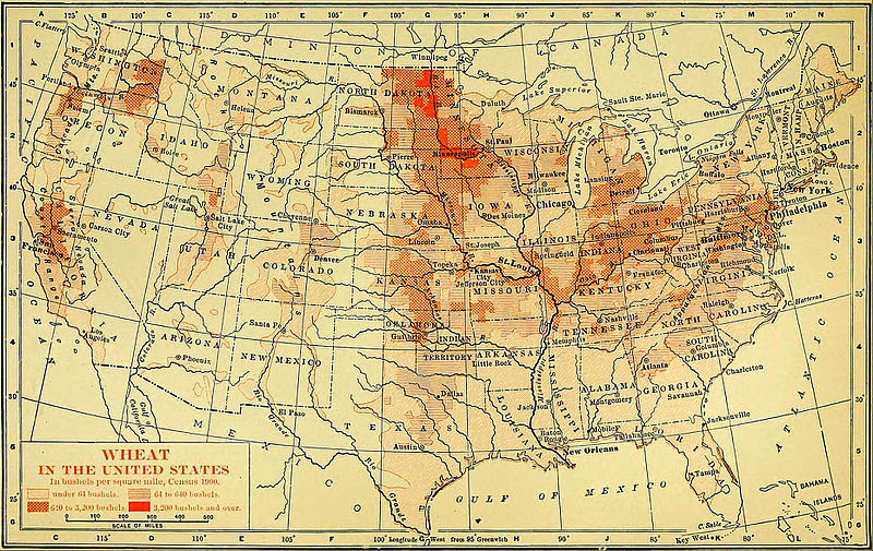 NIE 1905 United States - Wheat.jpg