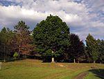Nannen Arboretum 20160819 04.jpg