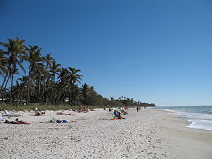 English: Naples, Florida: the beach Nederlands...