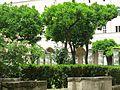 Napoli, Santa Chiara (17532837673).jpg