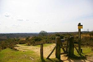 Veluwezoom National Park - Image: Nationaal Park Veluwezoom near Posbank