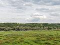 Nationalpark Unteres Odertal 03.jpg
