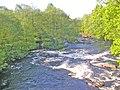 Naturreservatet Sumpafallen, 2003, fran Boarpa bro.jpg