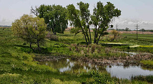 Fort Saint Vrain - Spring pond at the site of Fort St. Vrain, 2007