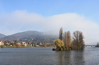 The Neckar near Heidelberg