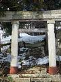 Neko no Miya Shrine01.jpg