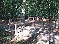 Neu Guthendorf, Germany, Begräbnisstätte im Wald (2006-09-24).JPG
