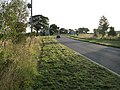 Newly mown verges - geograph.org.uk - 534158.jpg