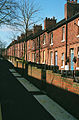 Newstead - terraced houses.jpg