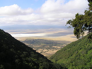 Ngorongoro Conservancy