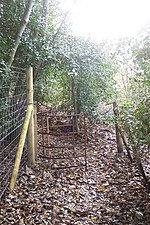 No more a kissing Gate near Rock Wood - geograph.org.uk - 1592226.jpg