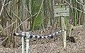 No trespassing to nowhere (24568352863).jpg