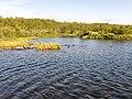 Norwegen Finnmark River P1290520.jpg