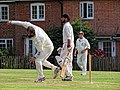 Nuthurst CC v. The Royal Challengers CC at Mannings Heath, West Sussex, England 34.jpg