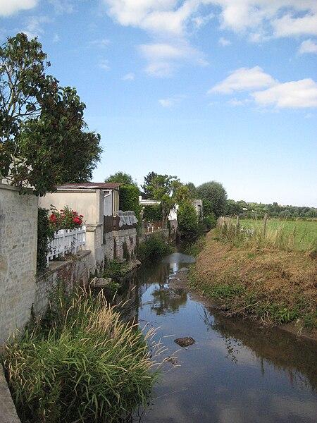 L'Odon à Bretteville-sur-Odon (Calvados, France)