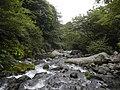 Oizumicho Nishiide, Hokuto, Yamanashi Prefecture 409-1501, Japan - panoramio (5).jpg