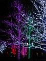 Oklahoma City Christmas Lights - panoramio - MARELBU (13).jpg
