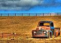 Old Ford pickup, Found in Field Dead.jpg