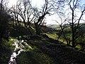 On Offa's Dyke, south-west of Hergan - geograph.org.uk - 339009.jpg