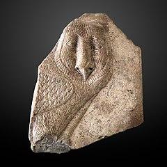 Owl hieroglyh-MAHG A 2004-32