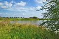 Přírodní památka Nebeský rybník, okres Prostějov (04).jpg