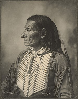 Hair pipe - Pablino Diaz (Kiowa) wearing a hair pipe breastplate, 1899