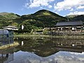 Paddy fields near Shimbashi Bridge 1.jpg