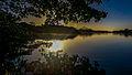 Parque Natural Municiapal Marapendi - Vista margem lagoa.jpg