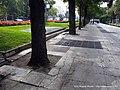 Paseo de Recoletos (5107085398).jpg