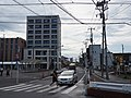 Pedestrian walking on zebra crossing Higashi-Koganei, Tokyo, 2020-09-03.jpg