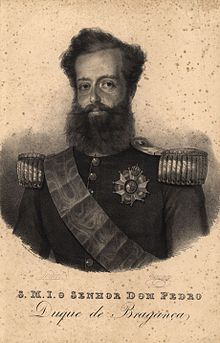 Lithographic half-length portrait depicting a middle-aged man with a full beard and wearing a military tunic with epaulets, sash and large medal
