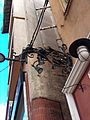 Perpignan ancienne enseigne 6bis rue de la Fusterie.jpg
