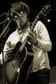 Pete Doherty,Festival We Love Green, photo F. Loock (5).JPG