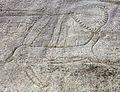 Petróglifo. Laxe dos carballos. Parque arqueolóxico de Campo Lameiro CL07.jpg