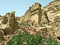 Petra - panoramio (1).jpg