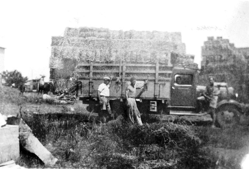 גן-שמואל-הובלת הקש מהשדה 1940-2