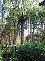 Pirčiupiai 65446, Lithuania - panoramio (12).jpg