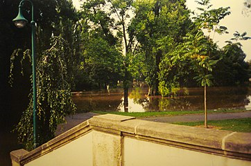 Pirna 2002 August Flood15.jpg