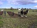 Ploughing match, Garvaghy - geograph.org.uk - 1224853.jpg
