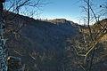 Pohled do Pustého žlebu z Blanseku, národní přírodní rezervace Vývěry Punkvy, okres Blansko.jpg
