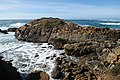 Point Lobos State Natural Reserve 1 18 19 (46886457871).jpg