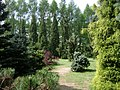 Poland. Warsaw. Powsin. Botanical Garden 043.jpg