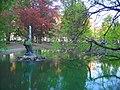 Pond - panoramio (14).jpg