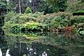 Pond at Tatton Park 1.jpg