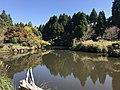 Pond near Aso Ape Performing Theater.jpg