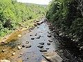 Pont de Saint-Placide-de-Charlevoix - rivière du Bras du Nord-Ouest amont.JPG