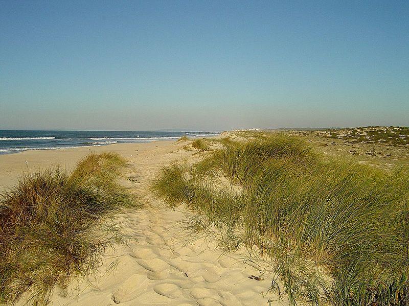 Image:Praia de Lis Norte (Portugal).jpg
