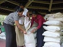 Preparation of rice sacks.jpg