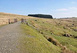Princetown Railway near Princetown.jpg
